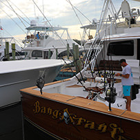 Hatteras Marlin Club Blue Marlin Release Tournament